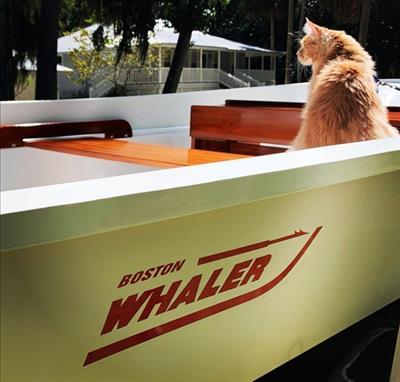Boston Whaler 17 super sport