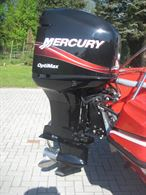Mercury Optimax 225 L